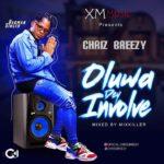Music Chris Breezy oluwa dey involved