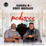 "[Music] Nollywood Actor ""Harry B"" Ft. Slim Brown – Pedigree"