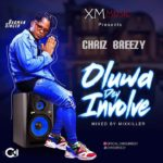 Music Chris Breezy oluwa dey involved