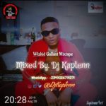 Dj Kaptenn – Wizkid Gallant Mixtape mp3 download