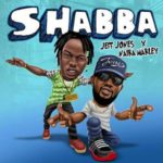 [Music] Jeff Jones ft. Naira Marley – Shabba