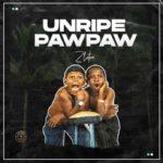 "[Full Track] Zlatan ""Unripe Paw Paw"""