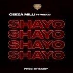 [Music] Ceeza Milli ft Wizkid – Shayo